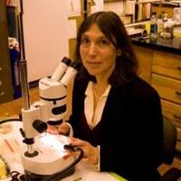 Lisa Levin, Ph.D.